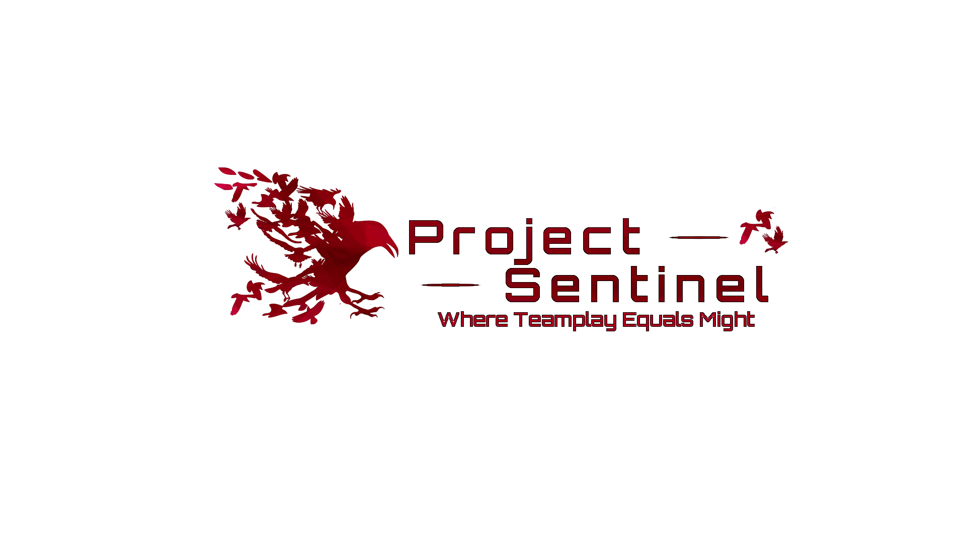 Project Sentinel