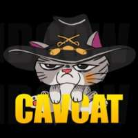 Profile picture for user CavCat
